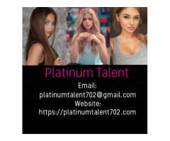 Busy Agency Seeking Entertainers - Cash Daily / No Experience Needed