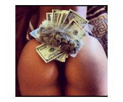 Cash, Ass or Grass.